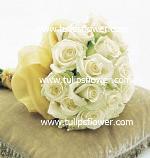 tulipsflowercomB058.jpg